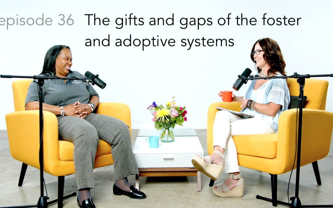 Understanding the gifts and gaps of the foster and adoptive systems